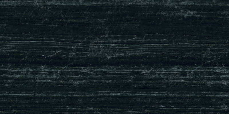 Black Venato - 120x60-714360-edited.png