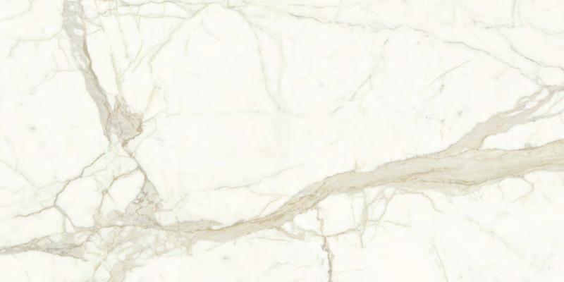 Calacatta - 120x60-131544-edited.png